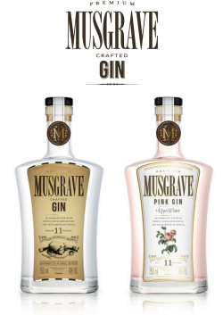 Gin and Jazz Evening with Musgrave Gin and Seelan Restaurant
